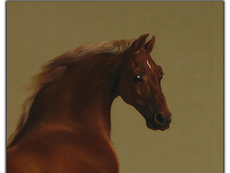 Who Was Whistlejacket?