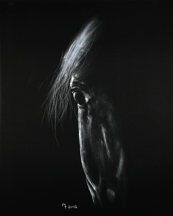 Original equinestrian fine art by Michael Troxler-Arabian head study