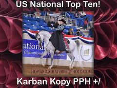 Congrats Karban Kopy PPH+/