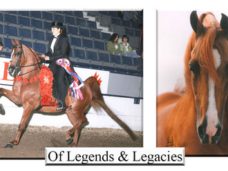 Of Legends & Legacies HBB