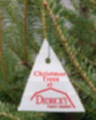 Christmas Trees at Dedricks.jpg