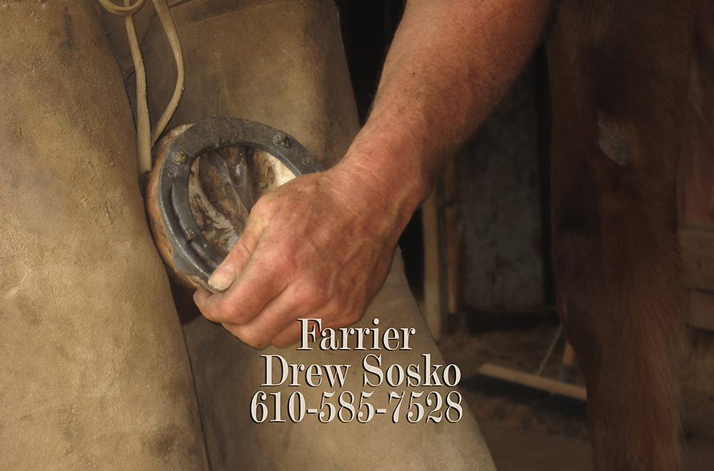 Bay Horse Innovations of New York Custom Farrier Truck Body for Drew Sosko