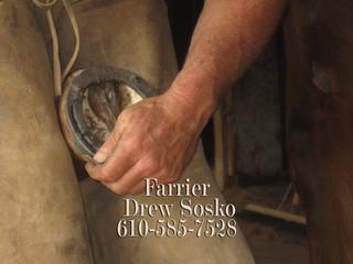 Drew Sosko Farrier Service