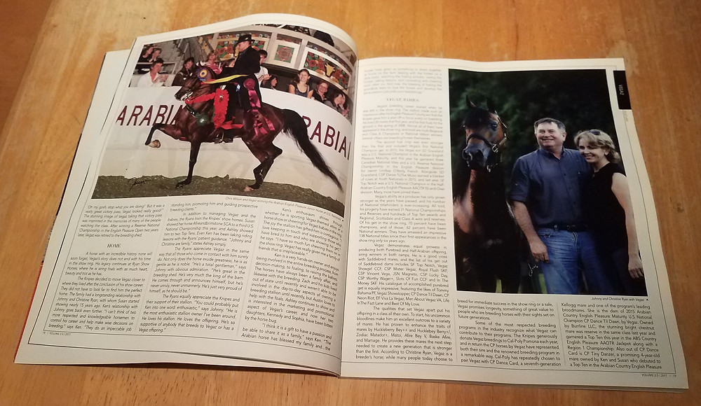 National Horseman Arabian article about Vegaz