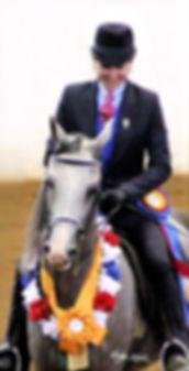 Ryan Show Horses Arabian and Half Arabian Horses-Christine Ryan