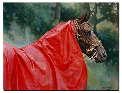 The Red Rain Sheet by Monica Acee
