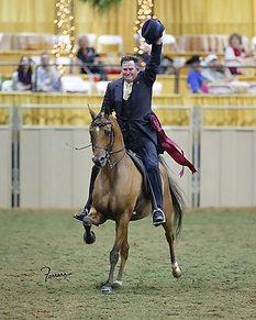 Johnny Ryan-Ryan Show Horses