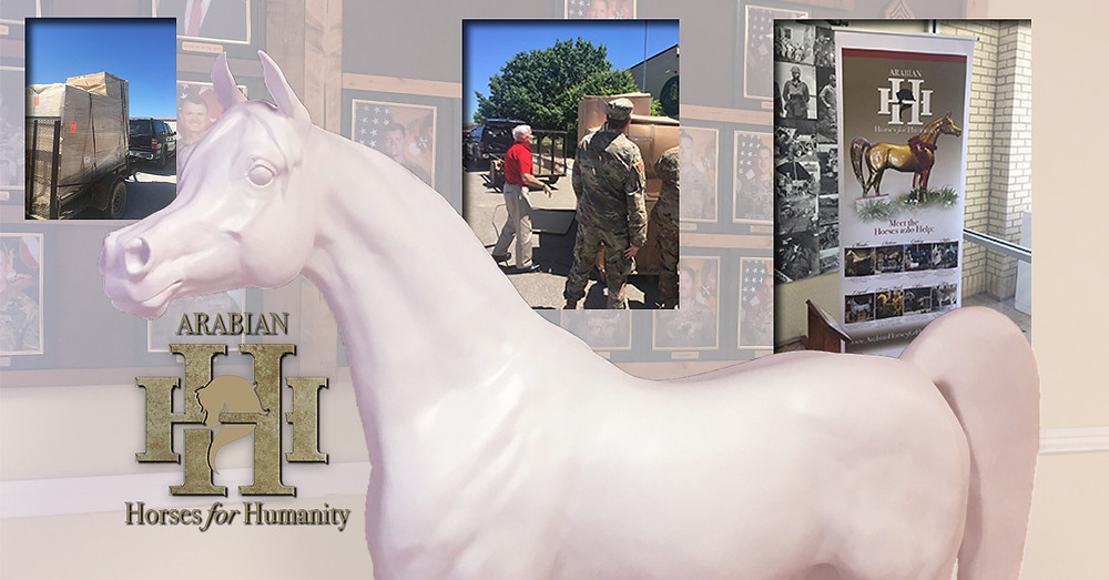 Arabian Horses For Humanity Fort Hood Hero