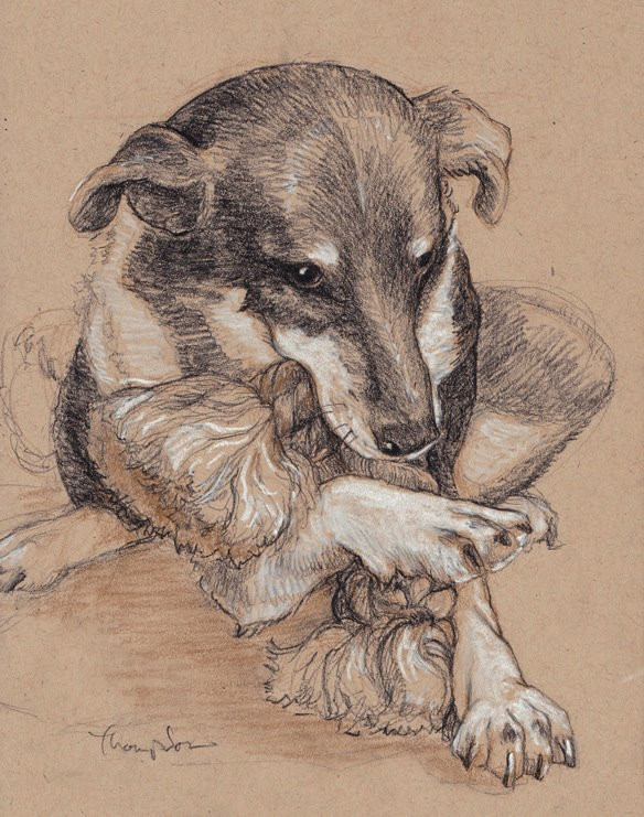 Fine Art by Tracie Thompson Pastel Pencil on Toned Paper