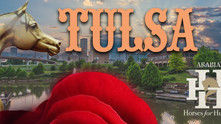 Tulsa Time Arabian Nationals Style