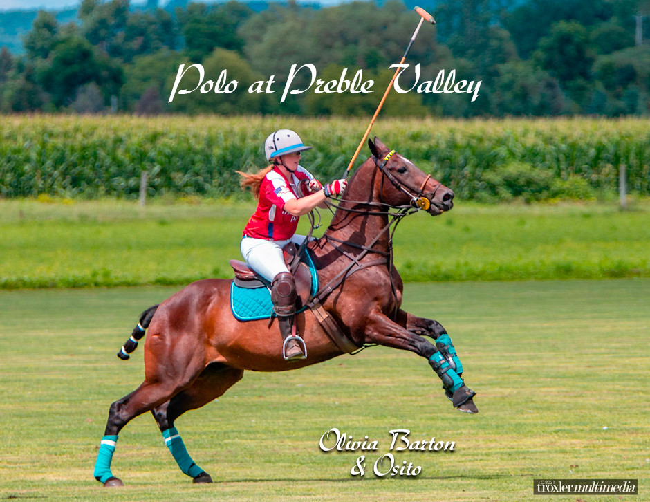 Equine photography by New York professional photographer Mike Troxler