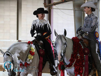Arabian Nationals-Showmanship & Horsemanship