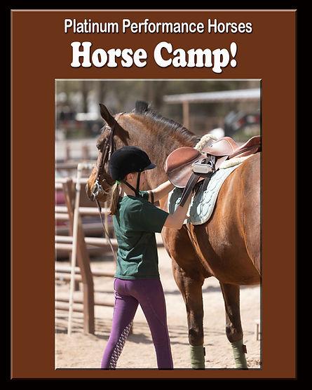 Riding lesson at Horse Camp in Albuquerque at Platinum Performance Horses