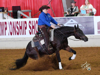 2017 Arabian Nationals-Reining