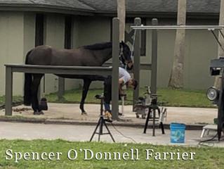 Spencer O'Donnell-Trailer Interior