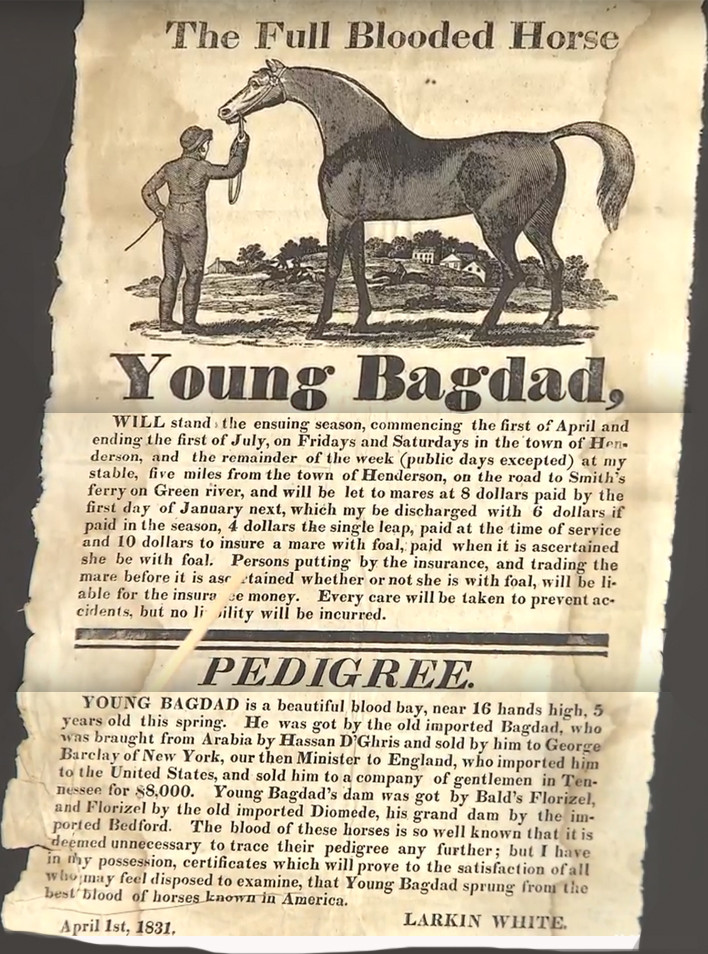 Young Bagdad broadside ad as featured on Antiques Roadshow May