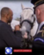 2019 Veterans Day post for Horses for Hu