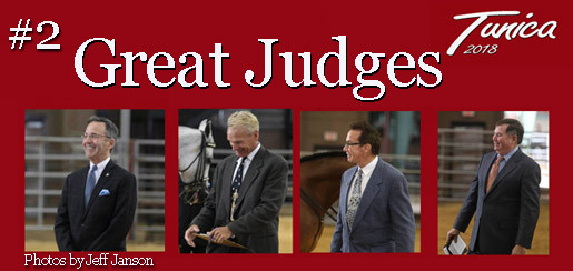 Arabian Horse show in Tunica MS-Alabama Arabian Horse Association-Judges