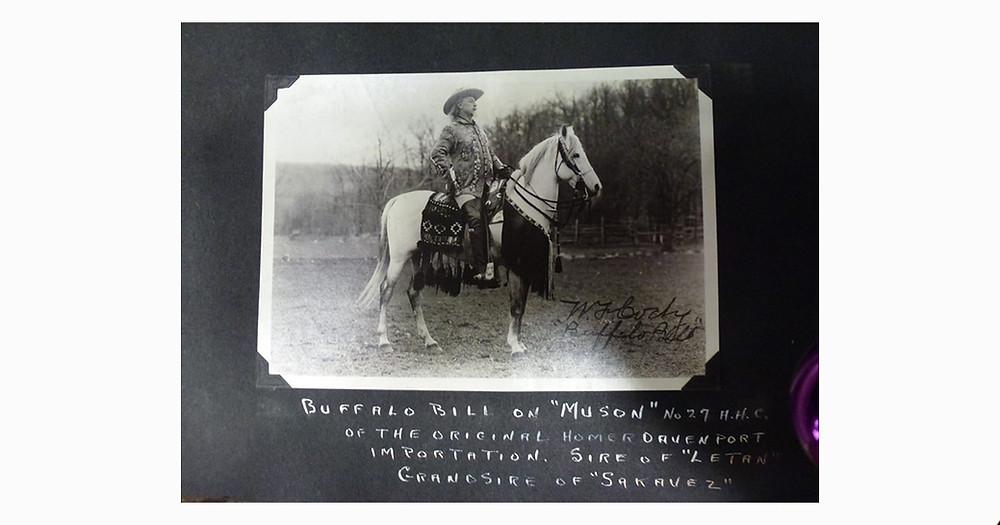 Homer Davenport Arabian stallion with Buffalo Bill Cody
