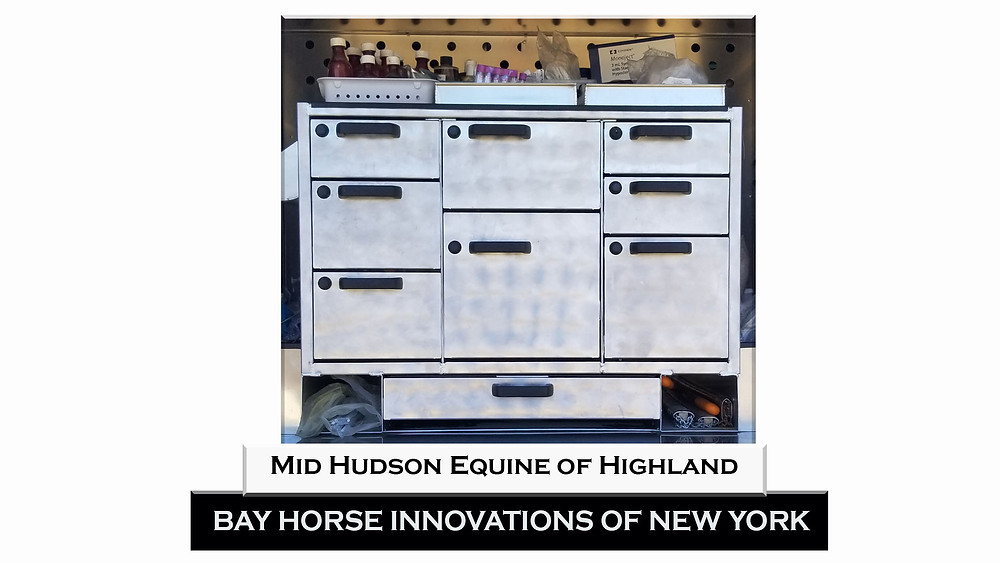 Custom Vet Body by Bay Horse Innovations of New York for Mid Hudson Equine of Highland