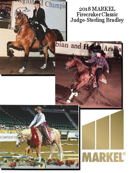 Sterling Bradley Center Ring Peformance Horses