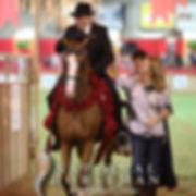 Ryan Show Horses Arabian and Half Arabian Horses Johnny Ryan on a National Champion