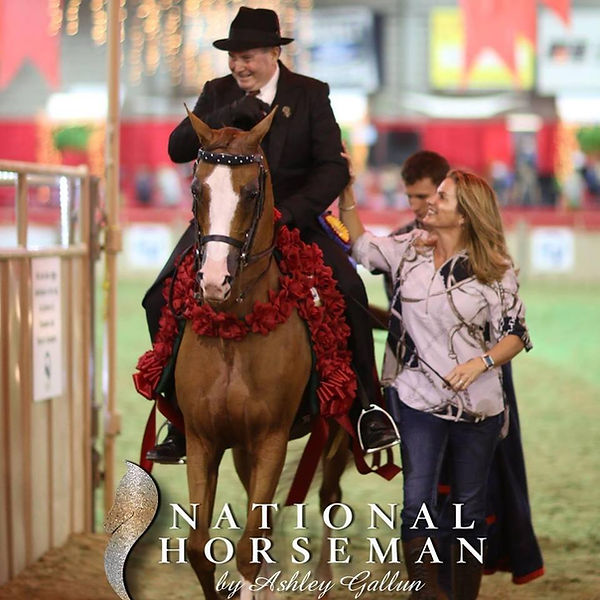 Ryan Show Horses Arabian and Half Arabian Horses Johnny Ryan on a National Champion