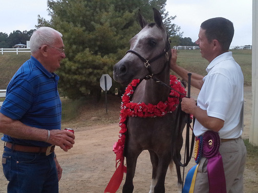 Peter Cameron, Michael Troxler and GJR Shahanna Khan, AHA Sport Horse Nationals 2013, VHC Lexington VA