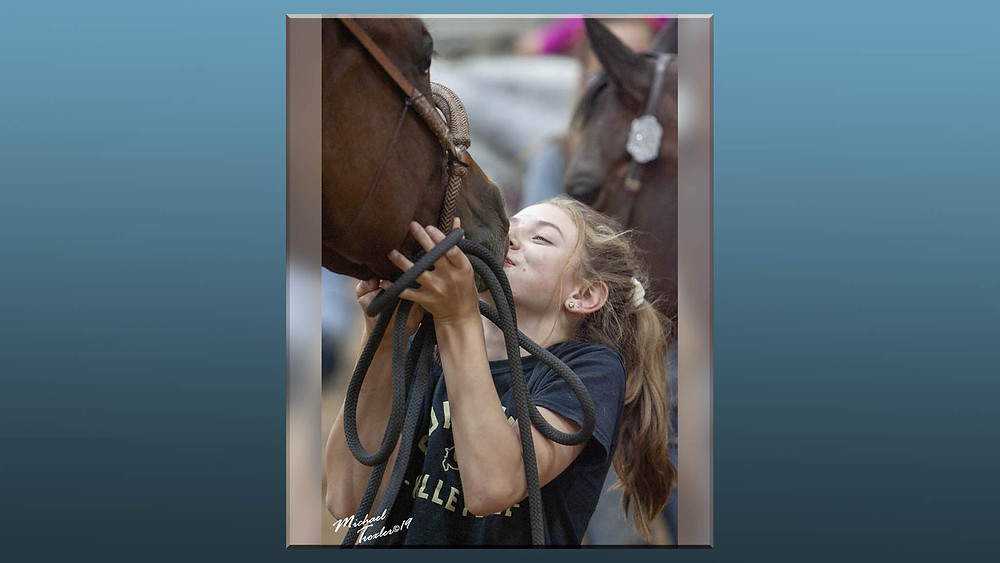 Equine candid photography by Michael Troxler