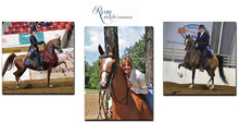 Exciting News from Ryan Show Horses