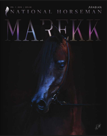 National Horseman Arabian Volume 1:1 2016