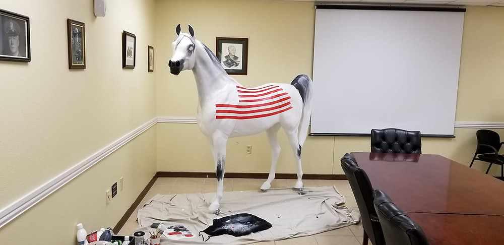 Arabian Horse For Humanity Hero at Fort Hood in production with Mackenzie Lima