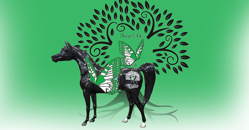 Arabian Horse for Humanity and the Friends of Vail Foundation