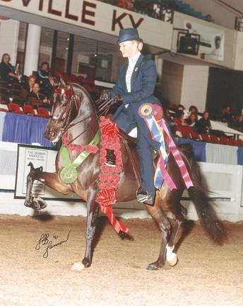 Toi Jabaska+// 2002 Arabian National Champion photo by Jeff Janson