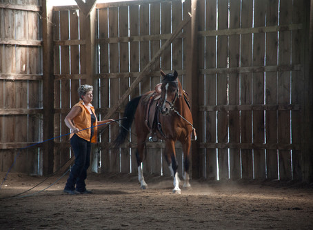 Horse Trainers Labor Day Weekend... Saturday, A Day of Firsts!