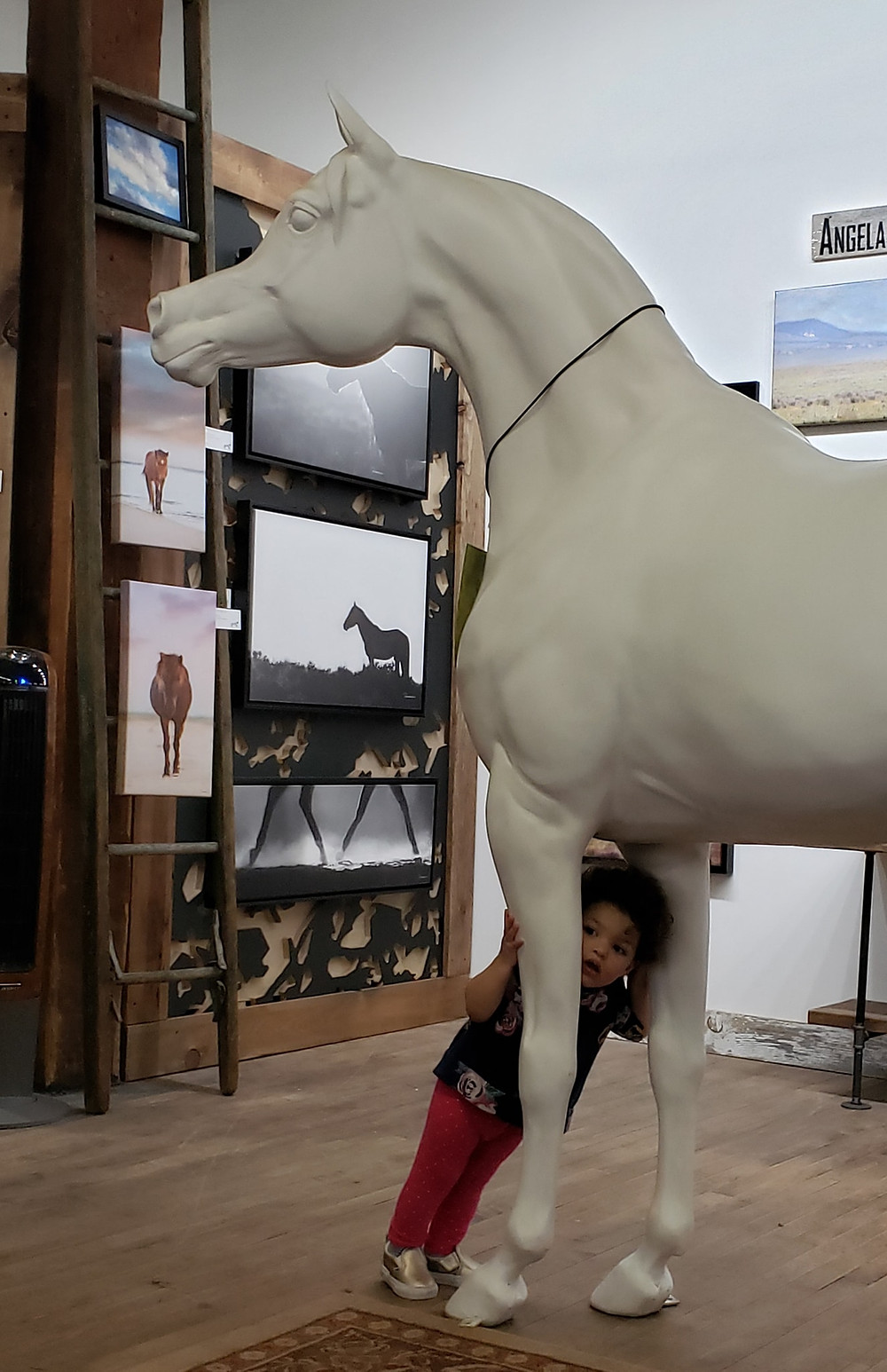 Arabian Horse For Humanity Salute at Gallery Equus