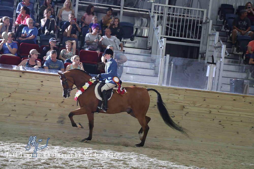 Lisa Powell 2018 Region 13 Arabian Championship