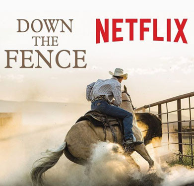 Down the Fence Netflix