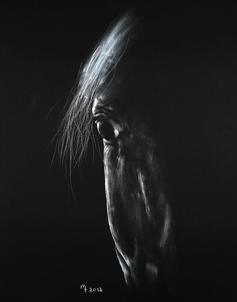 Fine Art by Mike Troxler Remy 2012