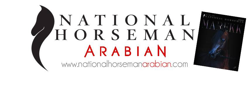 National Horseman Arabian
