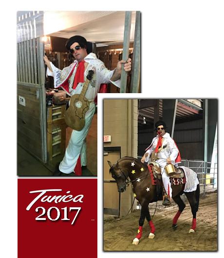 Alabama All Arabian Horse Show 2017