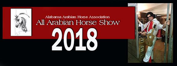 Arabian Horse Show Alabama