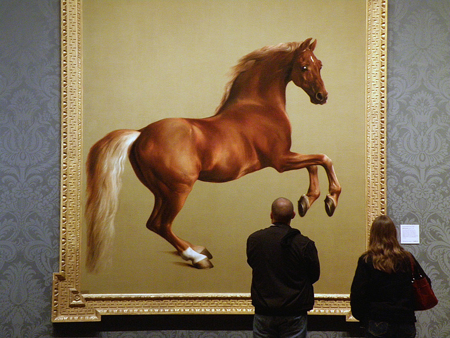 Whistlejacket by George Stubbs