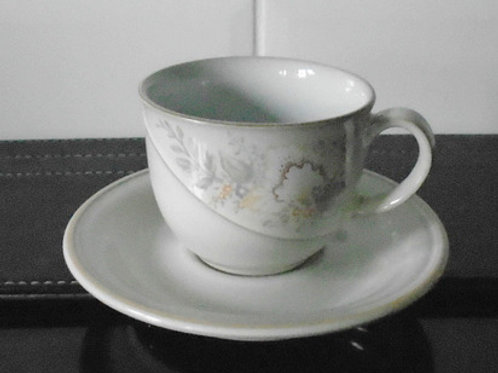 Denby Tivoli Cup and Saucer