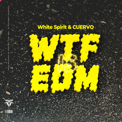 What The F@# is EDM
