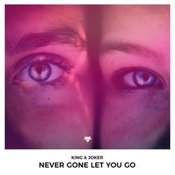 Never Gone Let You Go