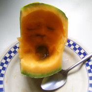 melon S pouledog ink.jpg