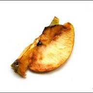 pomme renard pouledog ink.jpg