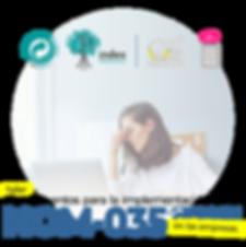 Fundamentos_para_la_implementación_de_la