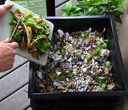 wormery lean green home composters_edite
